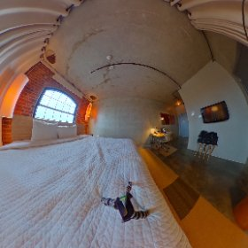 A 'Loft King' room at the NYLO Las Colinas! #theta360