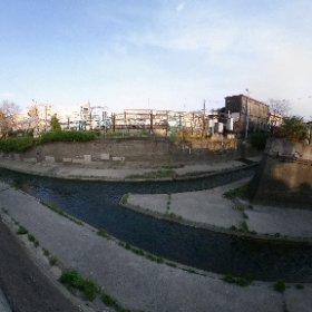 #ちゃらぽこ散歩会 神田川と合流で終点