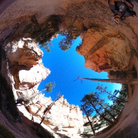 Hoodoos in Bryce Canyon National Park #theta360
