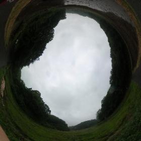 横浜寺家ふるさとの森その4 Yokohama Teraie Furusatonomori no.4 ドイツ式カイロプラクティック逗子整体院 www.zushi-seitai.com
