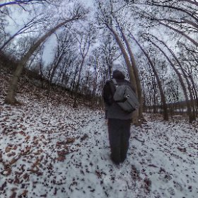 Winter hike through the woods #outdoors #nature #wilderness #travel #landscape #forest #tree #bagbrag @peakdesign #theta360