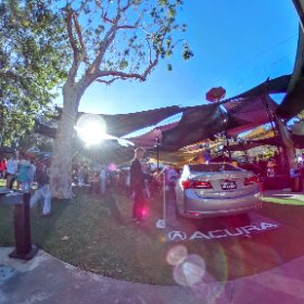Adventures in Lens flair #FestivalPageant #firefly3d #theta360