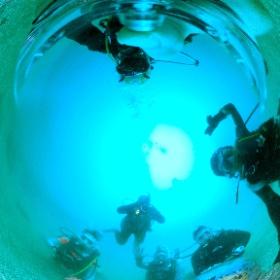 2021/07/22 江之浦 #ドラえもん #padi #diving #フリッパーダイブセンター #大瀬崎 #theta #theta_padi #theta360 #群馬 #伊勢崎 #ダイビングショップ #ダイビングスクール #ライセンス取得 #padiライフ