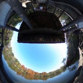 2020/12/1、石神井公園 三宝寺池より #theta360
