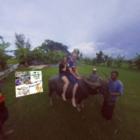 260 spherical Farm trip Pathum Tanni, Buffalo ride, activities https://goo.gl/4jEc2c BEST HASHTAGS #BuffaloRide     #FarmTourPhatumTanni    #TravelMeetLocalsBkkAdventureOctober018 #theta360