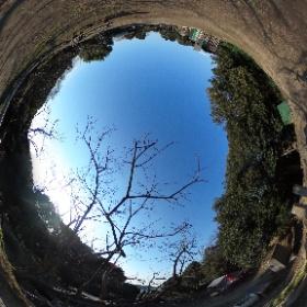 佐布里緑と花のふれあい公園 そうりプレーパーク #知多市