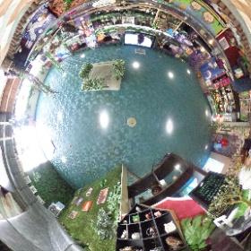 石川県にあるふくろうカフェ「梟の栖」をご覧ください!