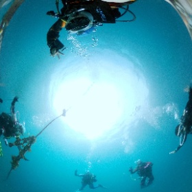 2021/05/30 雲見、グンカン #padi #diving #フリッパーダイブセンター #雲見 #theta #theta_padi #theta360 #群馬 #伊勢崎 #ダイビングショップ #ダイビングスクール #ライセンス取得 #padiライフ