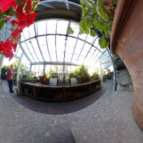 World of Beatrix Potter in the Lake District inside, Beatrix Potters Garden #peterrabbit #beatrixpotter #greenhouse #gardening  #theta360 #theta360uk