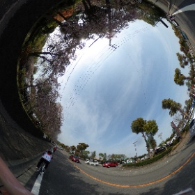 #sakura #bike #izu #sky #road #theta360