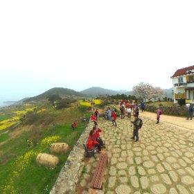 #韓国 #青山島 #theta360