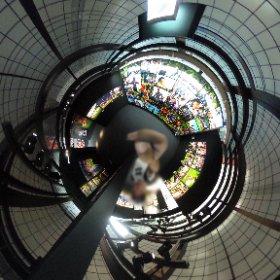 キヤノンギャラリーをリコーのTHETAで360°撮影してしまう。 #キヤノンイーグルス #リコーブラックラムズ #ラグビー #theta360