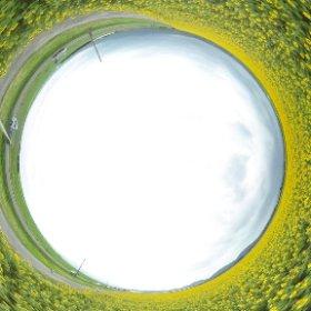 【圧巻!!ひまわり畑】  なんと!!300万本のひまわり畑の360°全球画像。  クリックして楽しんでください。  ♯RICOH ♯パノラマ ♯諫早